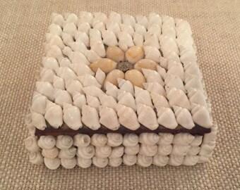 Miniature Conch Shell Trinket Box