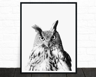 Owl Print, Owl Photo, Woodland Nursery, Animal Prints, Woodland Animals, Forest Animals, Wilderness Prints, Black and White Print, Printable