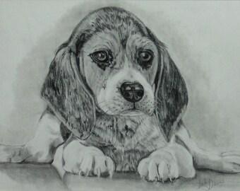 Puppy Pup!
