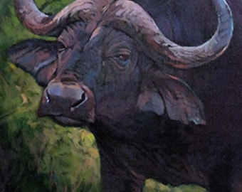 Last Warning - Cape Buffalo