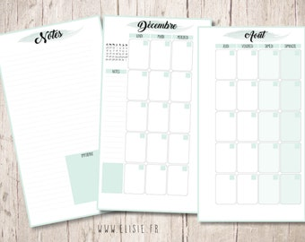 PRINTABLE - Refills Agenda - month on 2 pages-Format Personal - calendar month dated 2016-2017