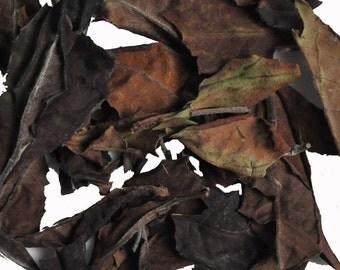 Malawi Peony Loose Leaf White Tea