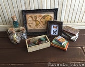 Collector's Vignette - Natural Science 1:6 scale collection
