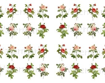 Rose Flower Decals, Decorate Flame-less Candles, Soap, Glass, Home Decor, Furniture, Magnets, Jewelry, Craft Projects, Scrapbooks