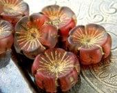 Wild Poppies (6) -Czech Glass Hawaiin Flowers 14mm