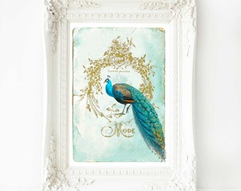 Peacock print, French vintage art in blue and gold, A4 giclee
