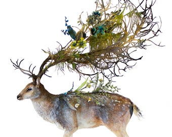 """of mysticism and artillery  - forest stag - Original Giclee Edition Print - 13x19"""""""
