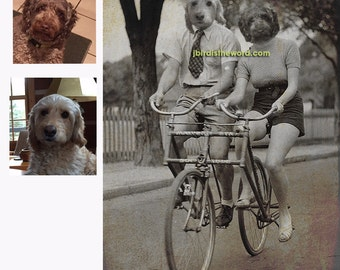5x7 Custom Vintage Antique photograph rendering with 2 of your pets FREE SHIPPING in the USA