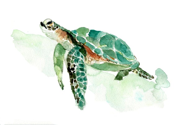 Obsessed image with regard to turtle printable