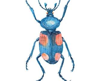 """Child's Room Beetles Nr. 1 (7,5"""" x 9,4)"""