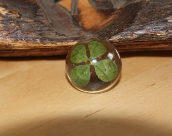 Real Four Leaf Clover in resin