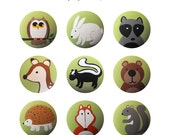 Hand Painted Knob - Children's Custom Hand Painted Woodland Critters Forest Animal Children's Drawer Knobs Pulls or Nail Covers for Kids
