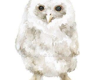 Baby Tawny Owl Watercolor Painting Giclee Print 8 x 10 - Woodland Animal Owl Painting - Nursery Art Print 8.5 x 11