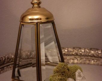 Brass and Glass Cloche