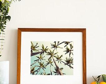 "Framed Photography Print, Palm Tree Wall Art, Mid Century Inspired, Framed Wall Art, Palm Tree Print, Wood Frame, Wall Art ""Sway"""