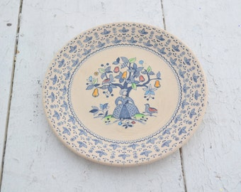 1970s Sugar and Spice Ironstone Salad Plate