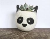 Felt succulent planter / panda planter / cactus planter / gift for her / desk decoration / Choose your color!
