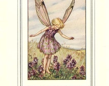 The WILD THYME FAIRY Vintage Book Plate c 1940 The Book of Flower Fairies Original Page Cicely M Barker