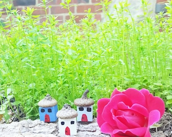Tiny Town Kit | Fairy House | Kids Craft | Acorn Craft | Nature Activity | Painting for Kids