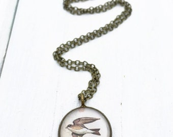 Clearance Sale SWALLOW JEWELRY / Illustrated Swallow Necklace