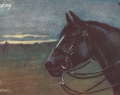 RESERVED FOR A - Scouting - Antique 1910s Tuck's Oilette Artist-signed War Horse Postcard