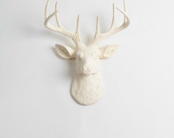 Antique White Mini Deer Head - The MINI Tobrin- Eggshell Resin Faux Deer Head- Stag Wall Decor by White Faux Taxidermy Animal Head Wall Art