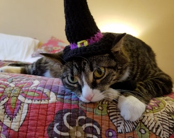 Cat Witch Hat