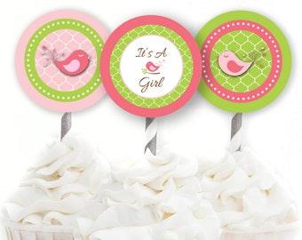 Bird Cupcake Toppers, Birdie Baby Shower, Pink and Green Shower Decor, Garden Baby Shower, INSTANT DOWNLOAD, Woodland Party Decor, #G6