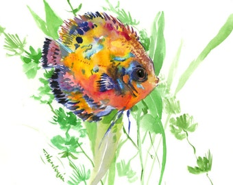 discus Fish one of a kind hand painted original watercolor painting 12 X 9 in, aquarium fish art, fish painting, tropical fish gift