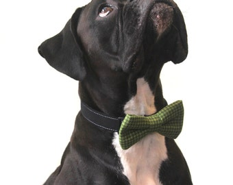 Doggie Bow Tie in Green Houndstooth for Boy Dog Accessories