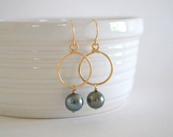 Tahitian Pearl Hoop Earrings, Gold Filled