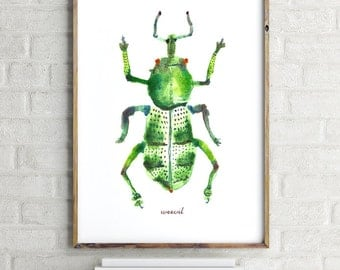Bug illustration, Bug art, Insect art, Green Weevil art print, Watercolor painting, Wall art, Beetle Bugs, Entomology, Buy 2 Get 1 FREE