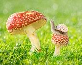 """Children's birthday card of snail on mushroom - 5x7"""" frameable"""