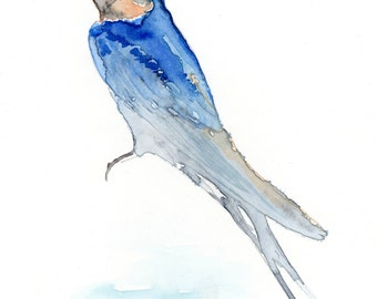 Swallow April 2016 Signed Limited Edition Archival Print of my own watercolour painting