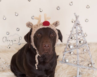 Download crochet pattern #039 - Large dog Reindeer hat, Christmas hat for dogs - pdf tutorial