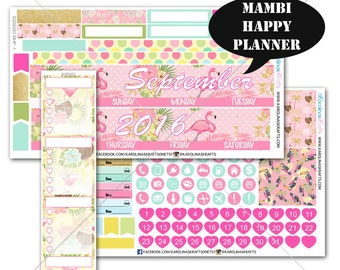 Flamingo MONTHLY Planner Kit / Happy Planner Stickers / Mambi Stickers / Monthly Sticker Kit #SQ00203-MHP