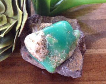 Australian Chrysoprase Raw Natural Crystal Stone ~ Oracle for Peace, Happiness & Tolerance