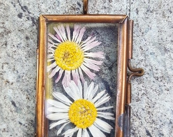 Real pressed Daisy glass pendant. Dried Flower. Botanical Necklace. Terrarium. Floating Copper Locket. Nature Lovers.