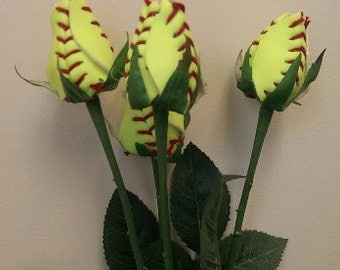 6 Baseball or softball long stem roses