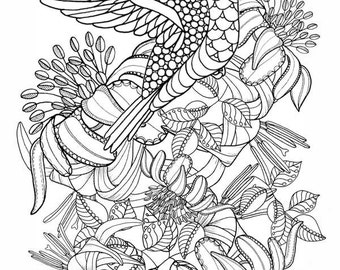 colouring pages adult coloring pages of the tangled peacock