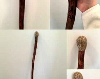 Michigan Hardwood and Petoskey Stone Walking Stick