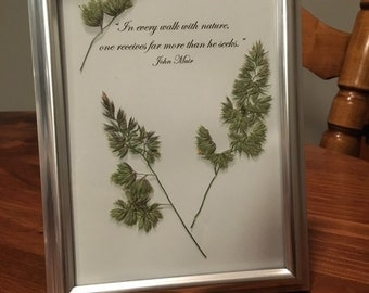 Pressed Grasses Picture with John Muir Quote - 5x7