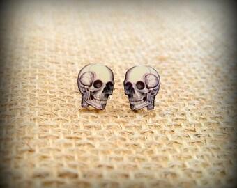 Skull Earrings - Skull Jewelry - Cranium Earrings - Creepy Earrings - Medical Jewelry - Halloween Skull - Vintage Art - Plastic Earrings
