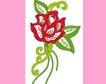 Beautiful rose-02