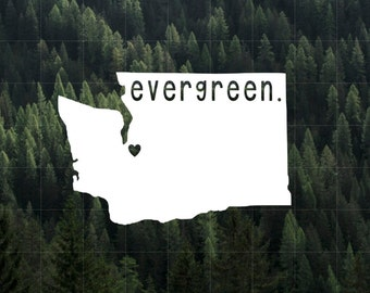 Evergreen Washington State Vinyl Decal | Car Decal | Yeti Decal | MacBook Decal | Water Bottle Decal | Evergreen State | PNW | Hometown