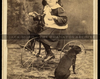 Antique Cabinet Card Photo - Boy on Tricycle & Little Dog with Back to Camera! Very Rare Pose