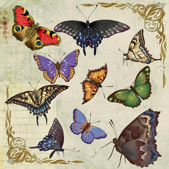 10 Vintage Butterflies