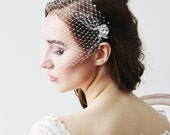 Swarovski Crystals Birdcage Ivory or White Veil and Crystal pins Wedding Bridal Accessories