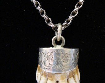 UNUSUAL Teeth Necklace A Real Vintage Oddity