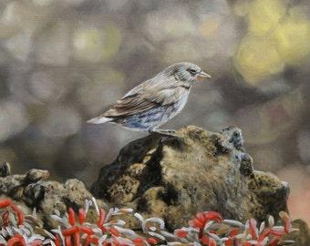 Bird Oil Painting on Canvas. Original Painting. Bird Painting. Bird Art. Oil on Canvas Art Canvas Painting Custom Painting Photo to Painting